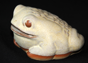 Tremar Frog or Toad Money Box/Piggy Bank