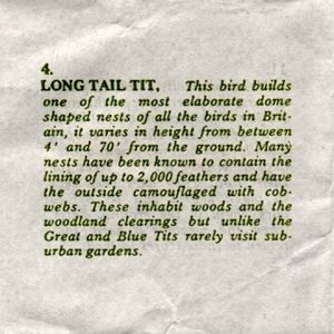 Tremar Pottery Baby Bird Insert - Page 6 - Long Tail Tit (No. 4)