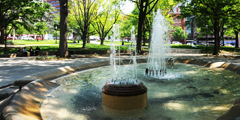 Fountain Located in the Middle of Franklin Square Park