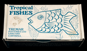 Open Drawing Box - The top of this box includes a drawing of the Yellow Wrasse as well as seaweed in the background.